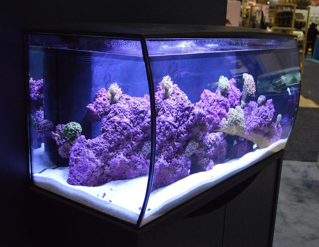 Fluval's FLEX line of aquariums was on prominent display; this larger version was set up as a saltwater aquarium.