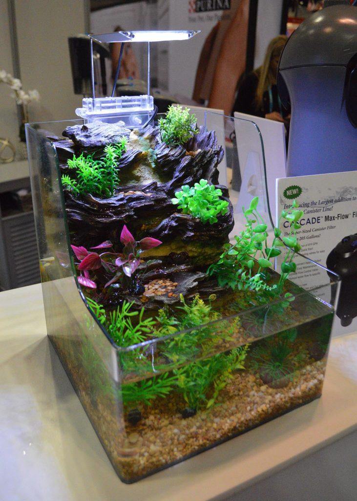 An interesting take on a small, desktop, open-top aquarium from Penn-Plax, the AquaTerrarium PTA1.