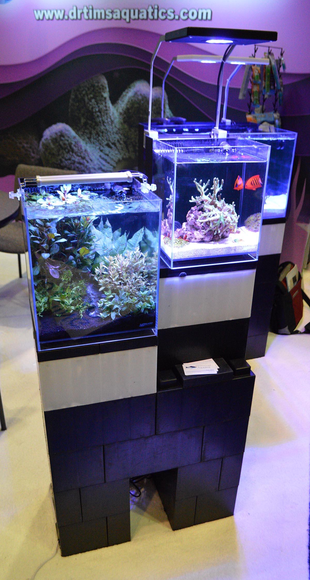 Lifegard's Elevated series of aquariums dominated the Dr. Tim's Aquatics display.