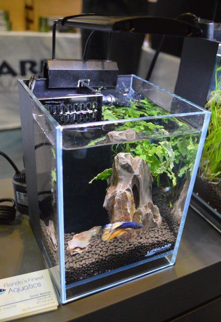 Lifegard's 1.2 Gallon Betta Low Iron Ultra Clear Aquarium R460054