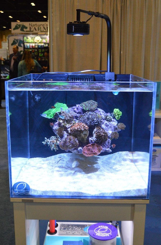This cube reef, a second display tank at Eshopps, caught the attention of many with an lesser seen aquascaping approach.