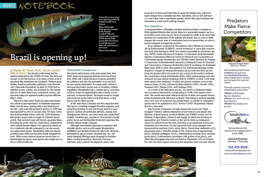 """Aquatic Notebook: Stephan M. Tanner, Ph.D., and Dr. Leandro Melo de Sousa discuss the impact of Brazil's revised aquarium fish export law and how it may impact the future of Brazil's aquarium trade. What changes will aquarists see? Find out, in """"Brazil is Opening Up."""""""