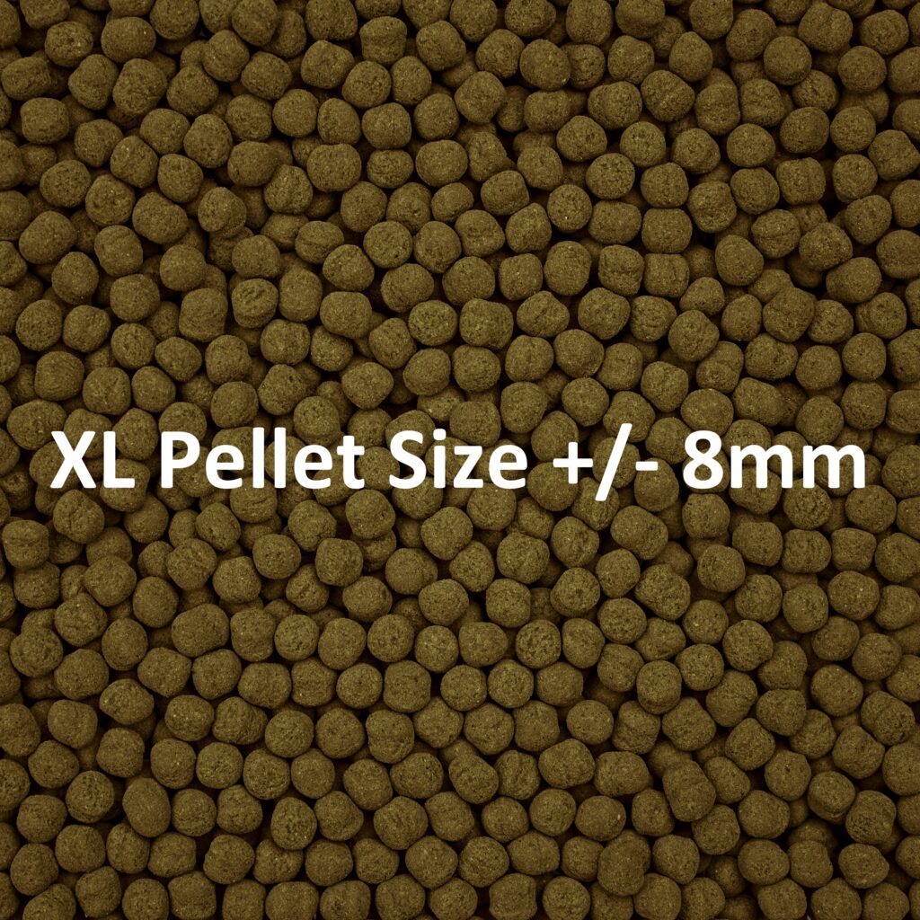 """Extra Large Formula Two Pellets are roughly 8 mm, or 1/4"""", in diameter."""