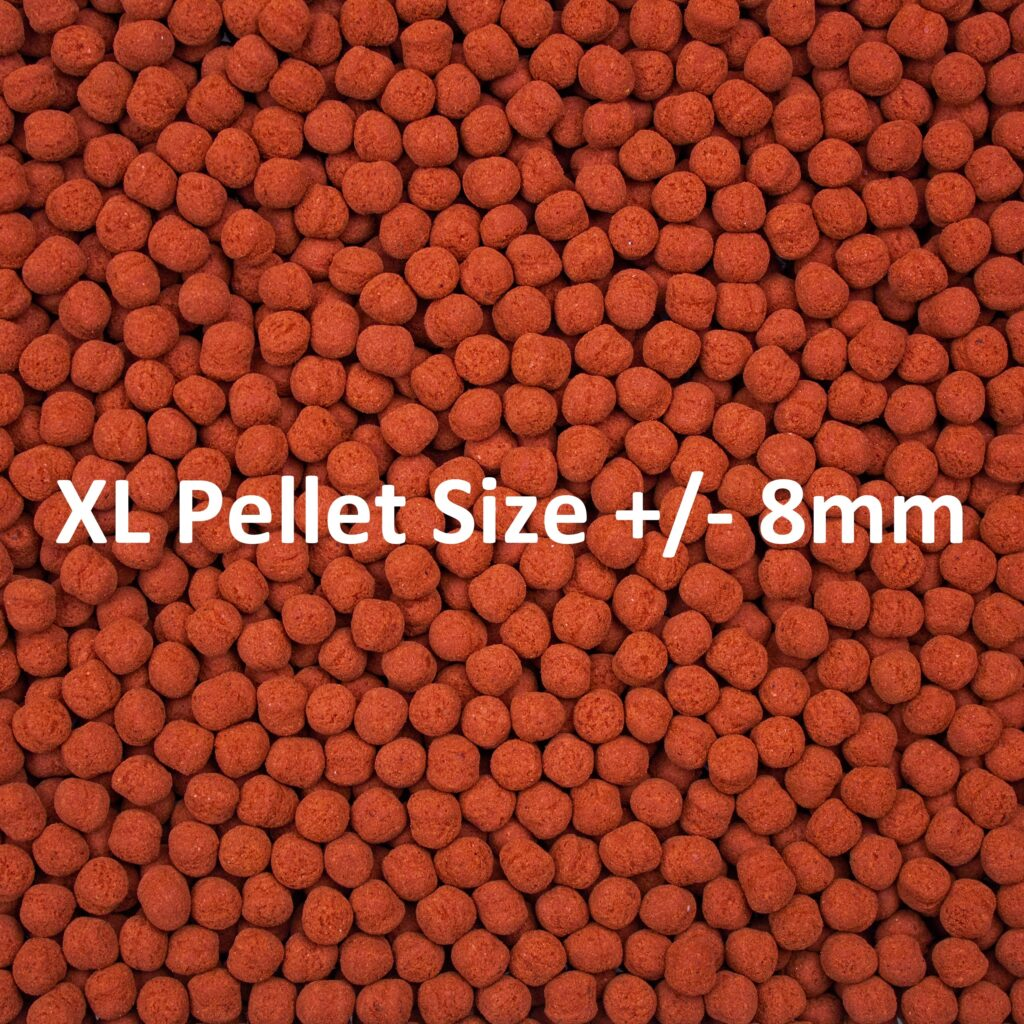 """Extra Large Formula One Pellets are roughly 8 mm, or 1/4"""", in diameter."""