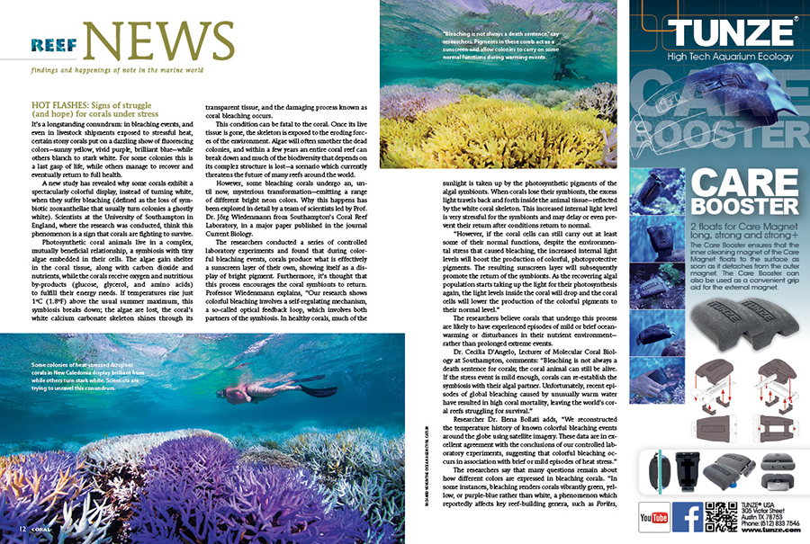 Reef News presents findings and happenings of note in the marine world. In this issue: HOT FLASHES: Signs of struggle (and hope) for corals under stress; Bubble, bubble, Vibrio and trouble: Corals, clams, and warming seawater; World's rarest living goby: Who can afford it?