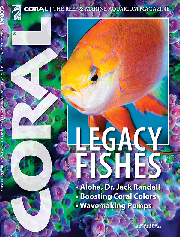 Cover of CORAL Magazine Volume 17, Issue 4 – LEGACY FISHES – July/August 2020. On the cover: Hawaiian Longfin Anthias, Pseudanthias hawaiiensis (Randall 1979): Doug Perrine/Blue Planet Archive. Background: Acropora sp. Immo Gerber