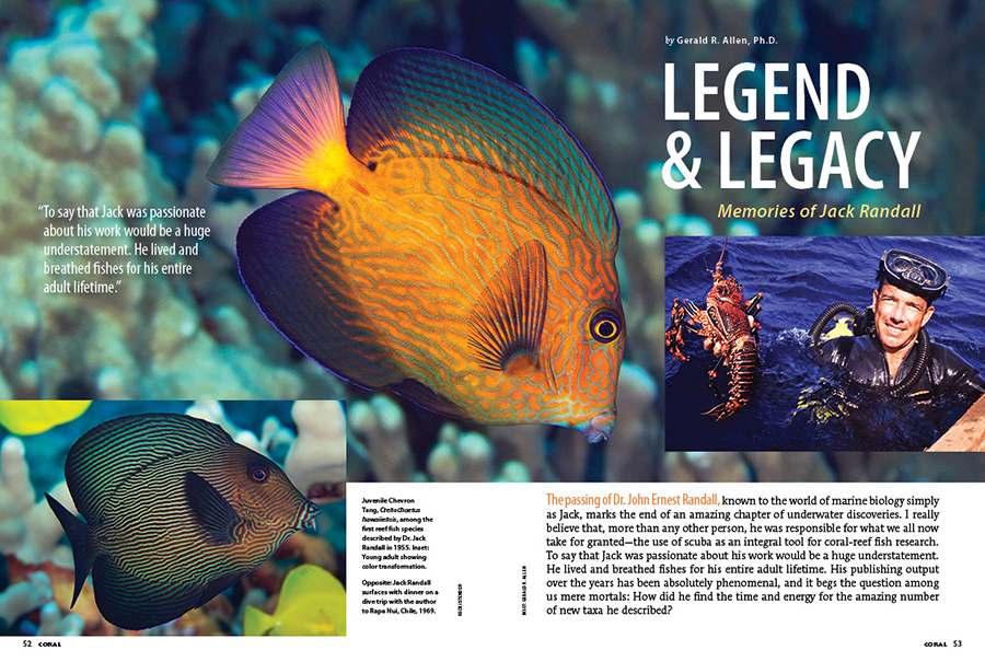 To say that Jack was passionate about his work would be a huge understatement. He lived and breathed fishes for his entire adult lifetime. Gerald R. Allen, Ph.D., shares his memories of Jack Randall in Legend & Legacy.