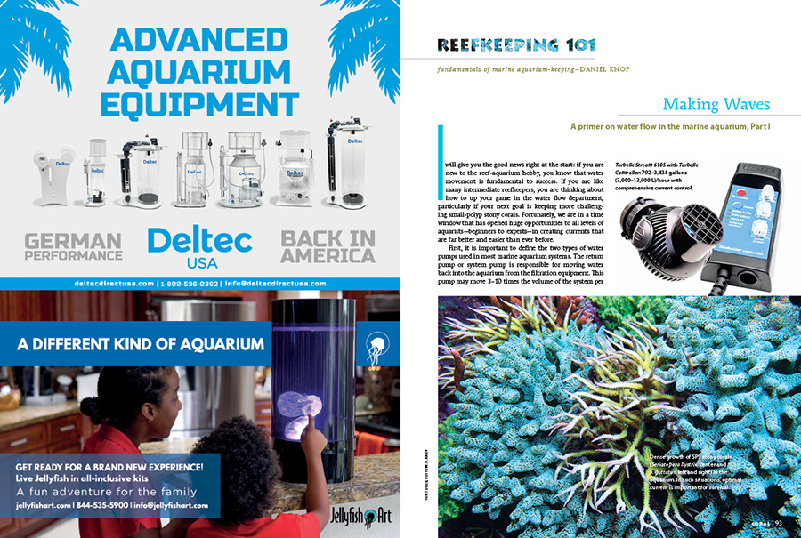 Reefkeeping 101 offers concise insight on topics of interest to all aquarists in a format accessible even to the first-time reef keeper. In this issue, we start with Part 1 of a primer on water flow in the marine aquarium.