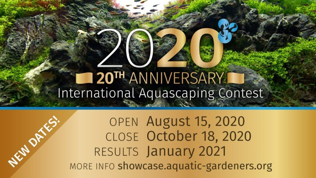 Announcing the 2020 AGA International Aquascaping Contest