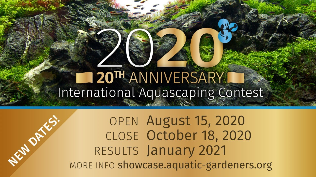 The AGA Aquascaping Contest for 2020 starts soon!