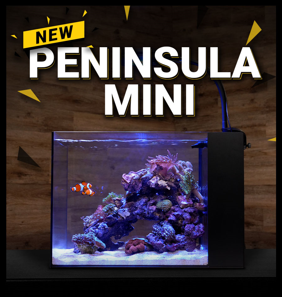 Waterbox Aquariums introduces the Peninsula Mini all-in-one aquariums for freshwater and saltwater applications.
