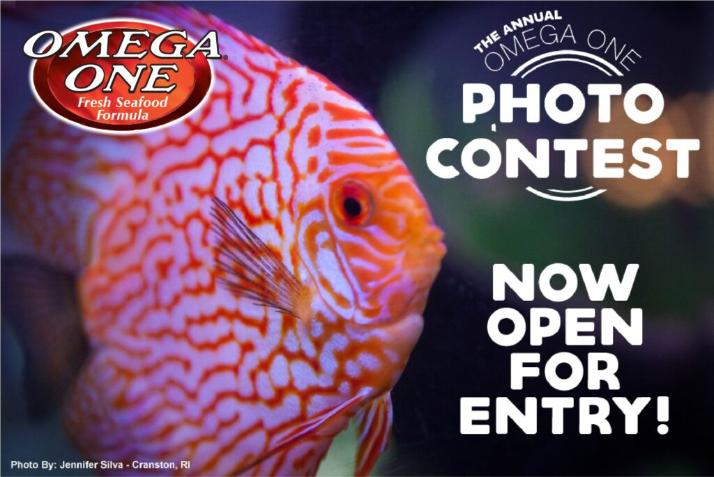 Enter now at https://www.omegasea.net/photo-contest!