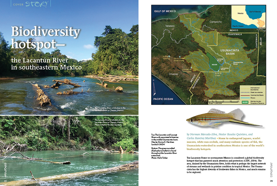 Home to endangered jaguars, scarlet macaws, white nun orchids, and many endemic species of fi sh, the Usumacinta watershed in southeastern Mexico is one of the world's biodiversity hotspots.