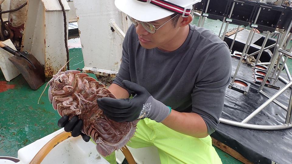Research associate Muhammad Dzaki Bin Safaruan holds up a giant isopod, Bathynomus raksasa, onboard the Indonesian research vessel Baruna Jaya VIII during the expedition