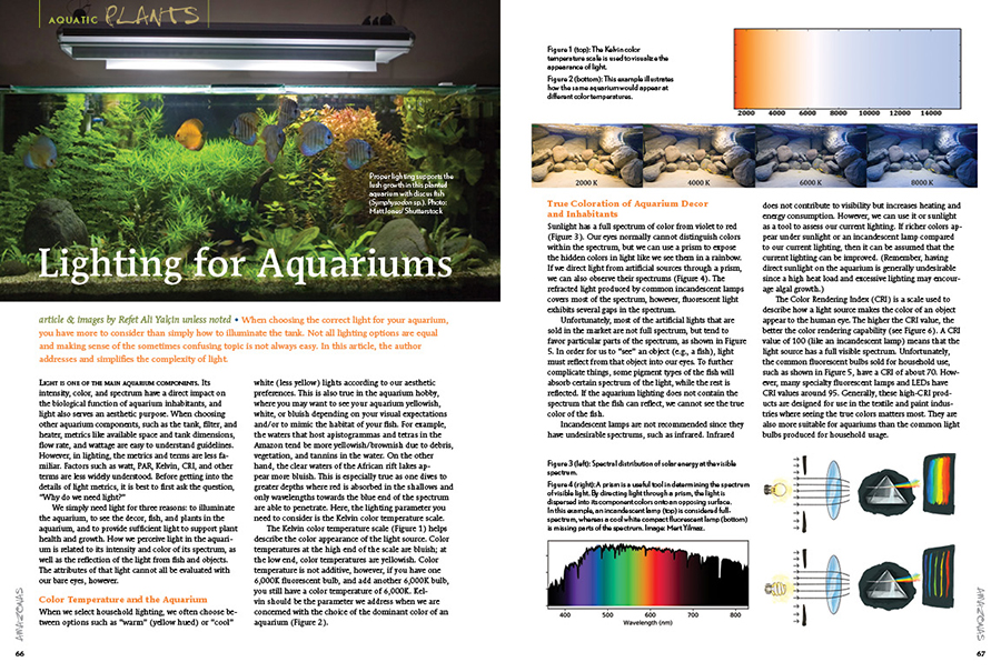 When choosing the correct light for your aquarium, you have more to consider than simply how to illuminate the tank. Not all lighting options are equal and making sense of the sometimes confusing topic is not always easy. In this article, Refet Ali Yalçin addresses and simplifies the complexity of light.