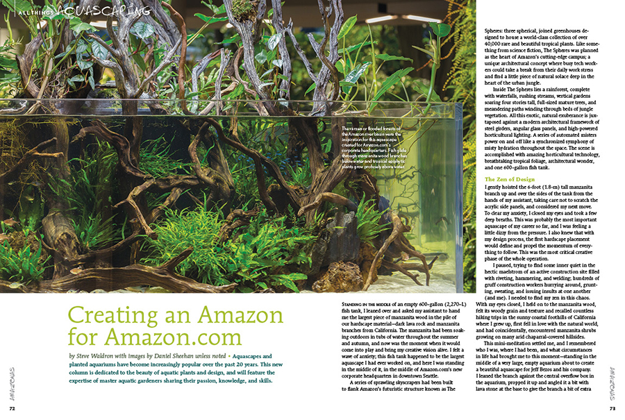 AMAZONAS contributor Steve Waldron of Aquarium Zen in Seattle, WA returns to share insights into one of the most high-profile aquascapes of his career: scaping the 600-gallon planted aquarium installation at AMAZON's Seattle Spheres.