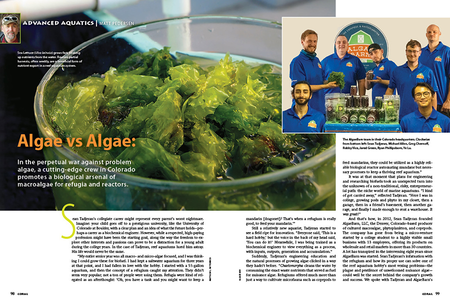 We round out each issue with the Advanced Aquatics section. This time around, CORAL Sr. Editor Matt Pedersen shares an interview with Sean Tadjeran and Greg Chernoff from AlgaeBarn, revealing how the humble refugium and particular types of macroalgae can play a decisive roles in winning the war on problematic algae in the reef aquarium.