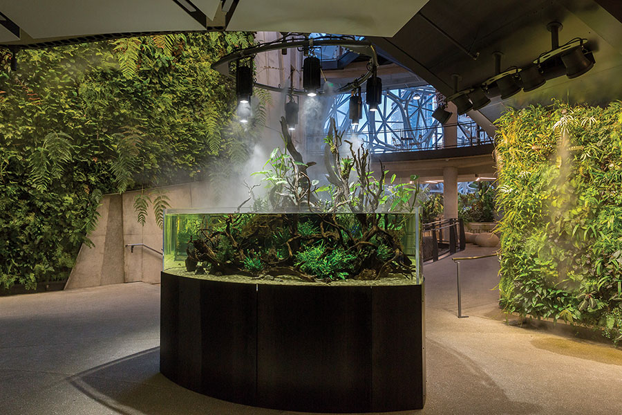 The Spheres aquarium is strategically placed between living wall displays. One of these vertical gardens reaches an impressive four stories in height.