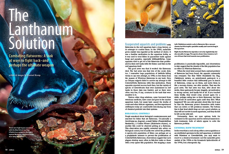 Daniel Knop may just have the answer you've been searching for. The Lanthanum Solution offers a look at the ways to combat flatworms, and perhaps the ultimate weapon.