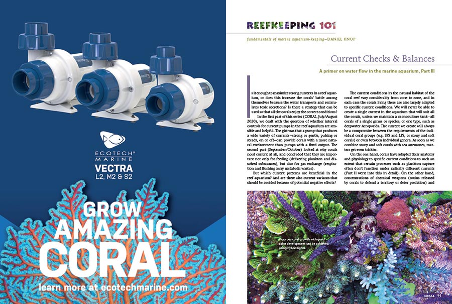 The third installment of Daniel Knop's Reefkeeping 101 series on water flow in the marine aquarium focuses on the types of circulation patterns that can be either detrimental or beneficial to your aquarium's inhabitants.