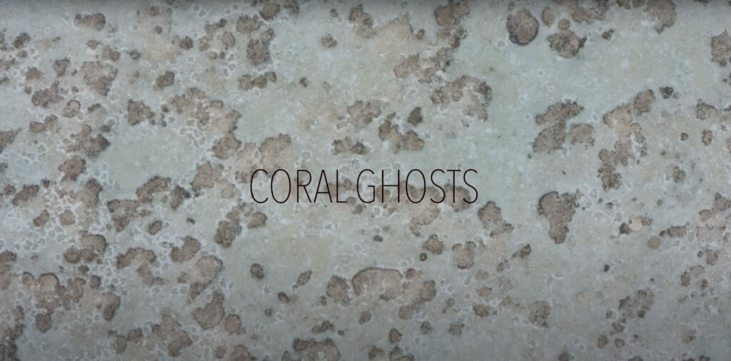 Coming Soon: Coral Ghosts