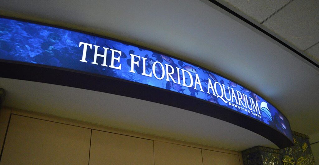 The display is meant to entice visitors to The Florida Aquarium, nearby in Tampa, FL.