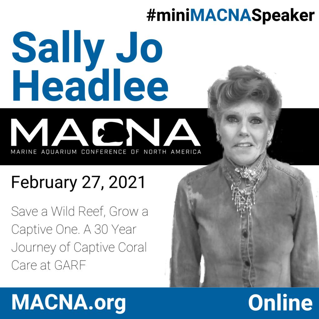 Sally Jo Headlee headlines as the first speaker for mini MACNA 2021