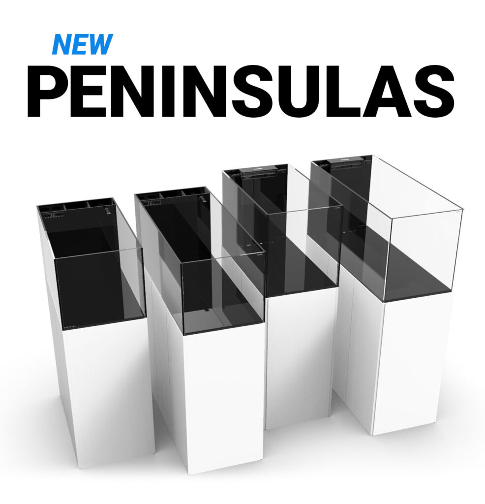Waterbox Aquariums unveils three- and four-foot room divider peninsula aquariums in overflow-with-sump and all-in-one models. Left to right: PENINSULA AIO 50.3, PENINSULA AIO 65.4, PENINSULA 3620, PENINSUAL 4820