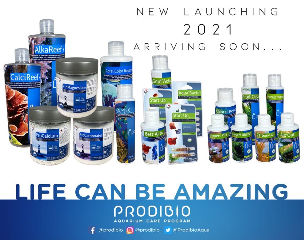 ProdibioAnnounces New Products For 2021