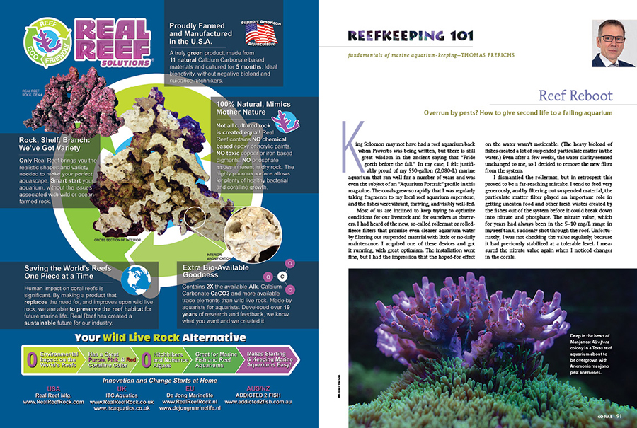 Overun by pests? Reef just gotten away from you? Thomas Frerichs walks you through his reef reboot, giving a second life to a failing reef aquarium. Learn from his experience in this issue's Reefkeeping 101 column.