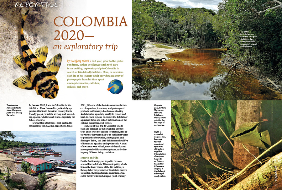 Last year, prior to the global pandemic, author Wolfgang Staeck took part in an exciting, exploratory trip to Colombia in search of fish-friendly habitats. He describes each leg of his journey while providing an array of photographs from his time spent amongst characins, catfishes, cichlids, and more.