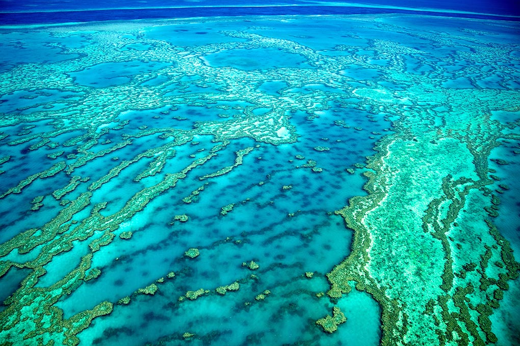 The Great Barrier Reef, which UNESCO suggests should be added to the List of World Heritage in Danger. Image: Tanya Puntti/Shutterstock
