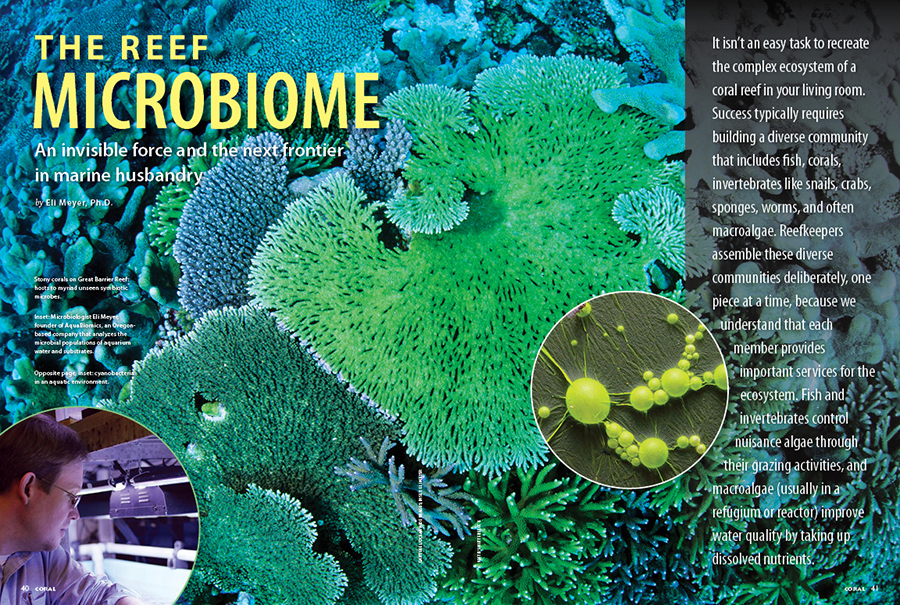 Will microbiome testing further the science of reef aquarium and coral husbandry? Through environmental DNA sequencing, Dr. Eli Meyer reveals the hidden biodiversity of the microbiome in reef aquariums with some surprising results!