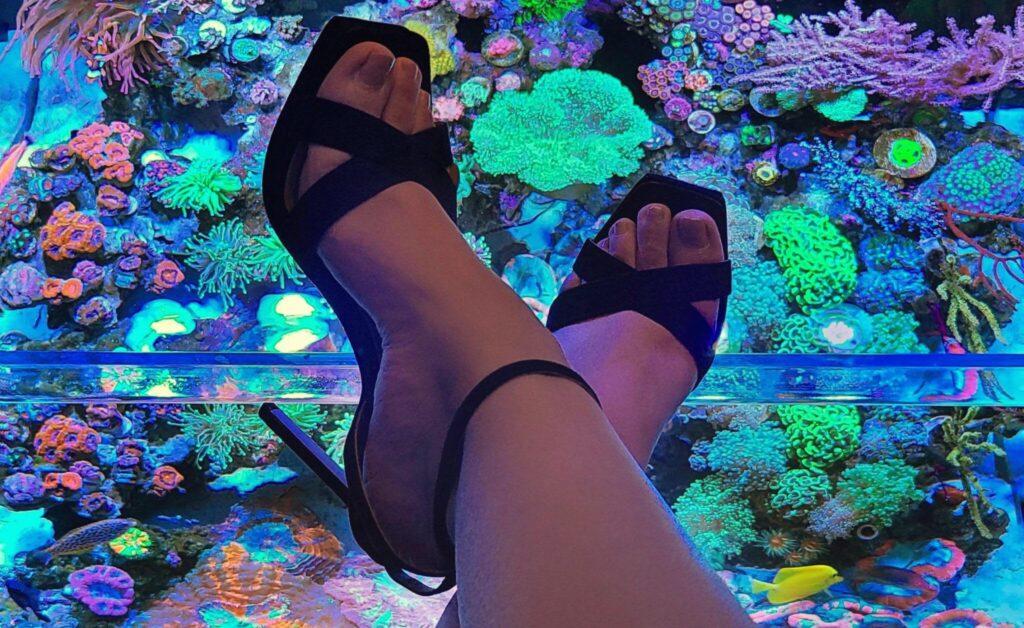 Reefing in Heels