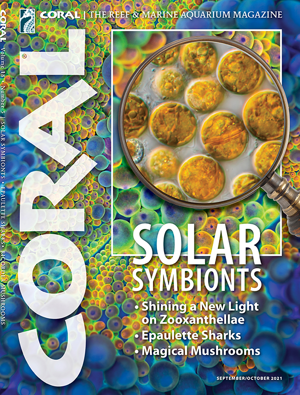 """Cover of CORAL Magazine Volume 18, Issue 5 – SOLAR SYMBIONTS – September/October 2021. On the cover: """"Zooxanthellae"""" cells: Frank Fox/Science Photo Library. Background: Ricordea yuma Mushroom Coral: Michael Vargas."""