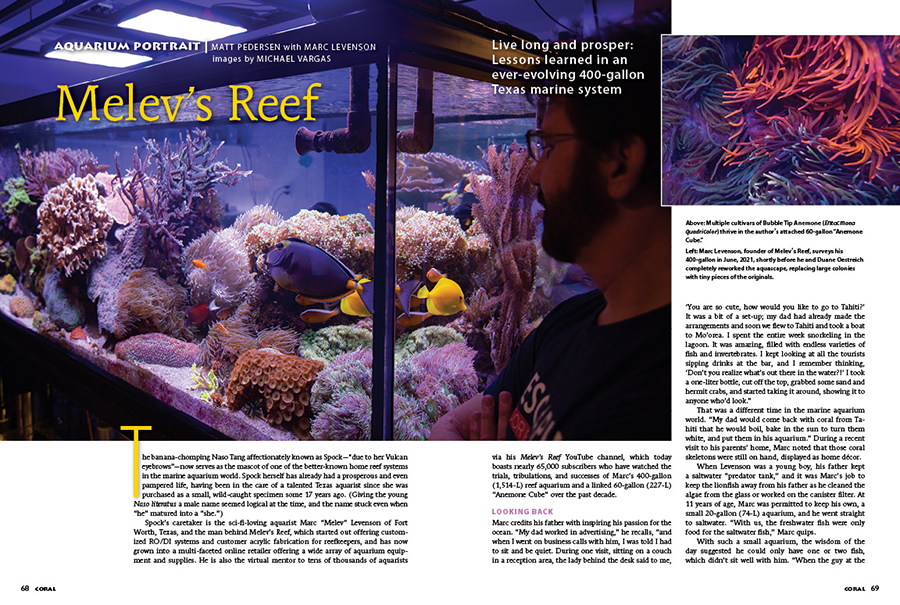 Our Aquarium Portrait for this issue features Melev's Reef, better known as the reef aquarium of veteran hobbyist and industry insider Marc Levenson of Fort Worth, Texas. It's a unique collaboration and format for the Aquarium Portrait, featuring the photography of Michael Vargas and the story of Melev's Reef shared through an interview with Levenson by Matt Pedersen. You can read this article now, for FREE, in a rare and exclusive online except from CORAL Magazine!