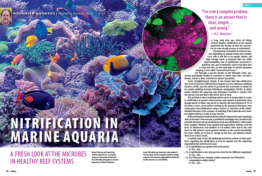 Dr. Timothy A. Hovanec offers a fresh look at the microbes in a healthy reef system as we reexamine nitrification in marine aquariums from the ground up. It's an Advanced Aquatics read you won't want to miss.