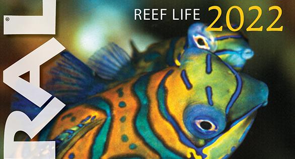 REEF LIFE 2022 Calendar