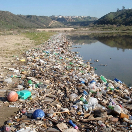 Debris along the lower part of the Tijuana River National Estuarine Research Reserve (Credit: Tijuana River National Estuarine Research Reserve).