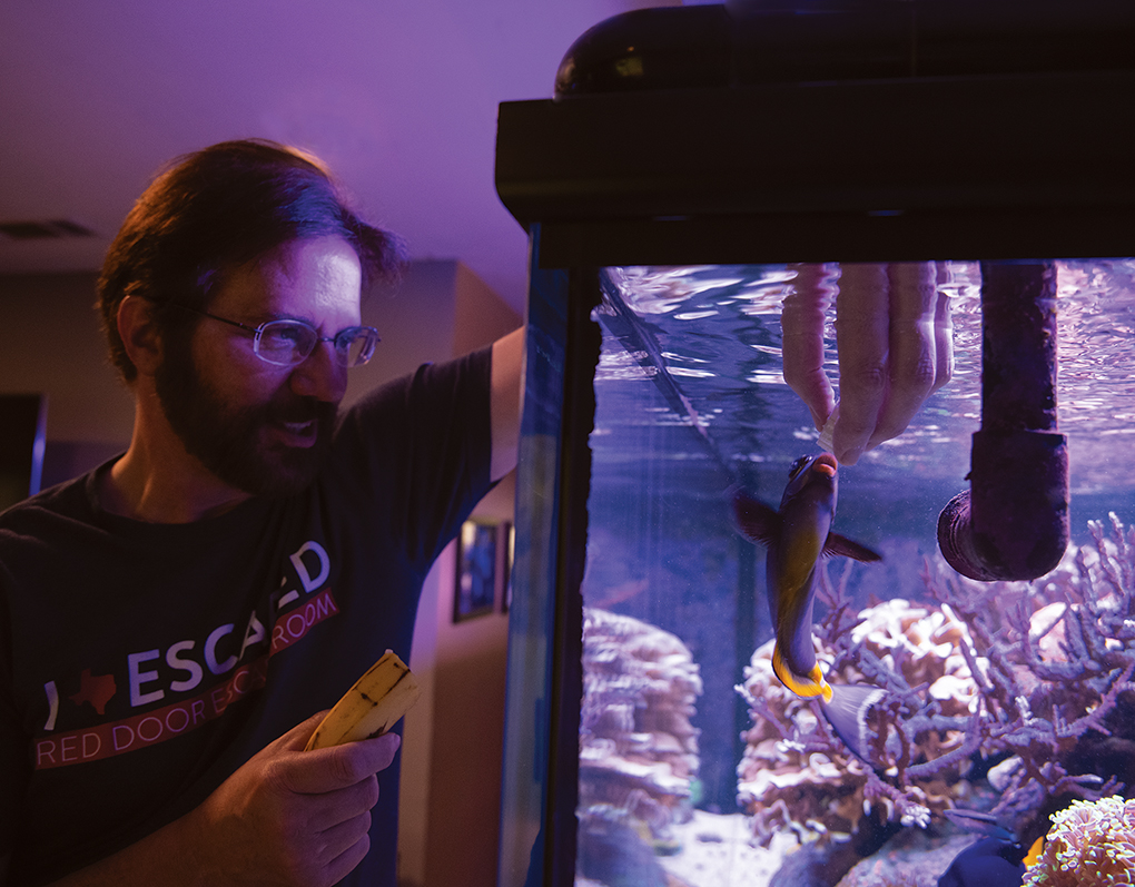 Marc Levenson hand feeds banana to his old friend, a Naso Tang named Spock.