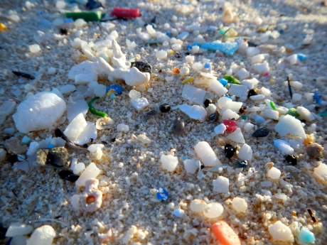 Microplastic pieces on a beach (Photo: NOAA).