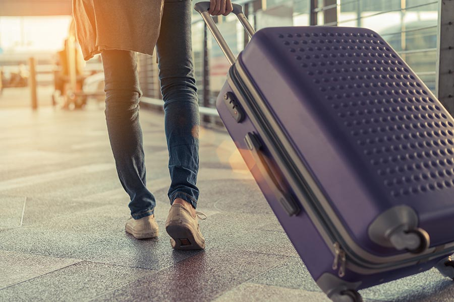 Perhaps surprising to some, it is possible to fly with aquatic livestock in carry-on luggage. Photo: Qilin's prance Filmmaker/Shutterstock
