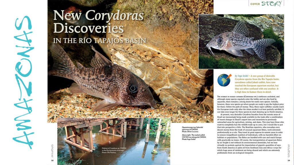VIDEO Inside Look: AMAZONAS Magazine