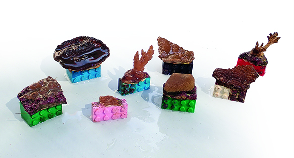 LEGO to the Reef Restoration Rescue