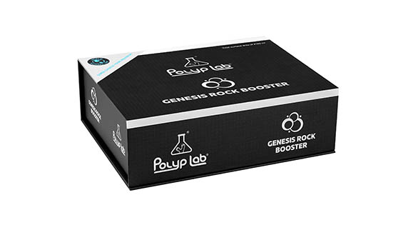 Genesis Rock Booster From Polyplab